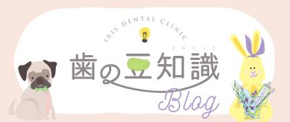 歯の豆知識ブログ